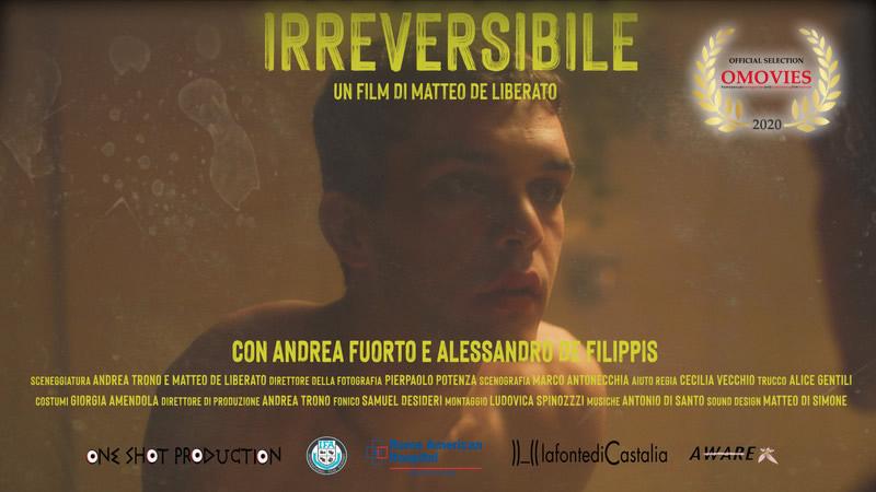 Irreversibile – DirectorMatteo De liberato Dec 24